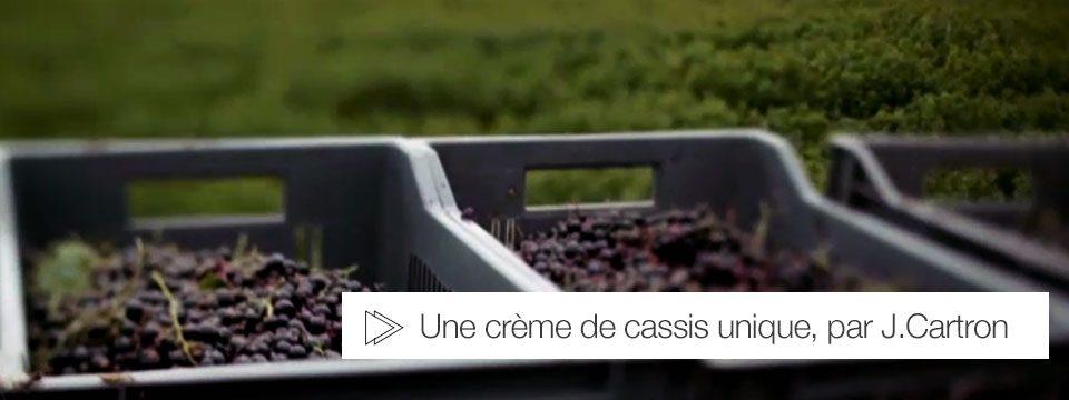 creme-cassis-joseph-cartron-2014