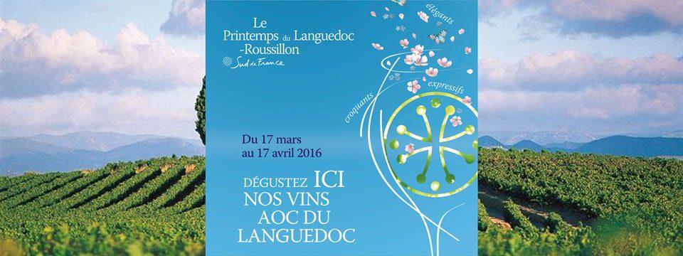printemps-languedoc-limoges-vinoble-caviste-2